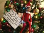elf message